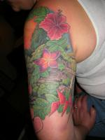 This is a tattoo of the island of Maui.  I've been to all these places, but she's from there.  Custom color